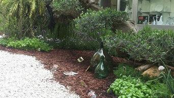 Progetto per un giardino in via Argiro