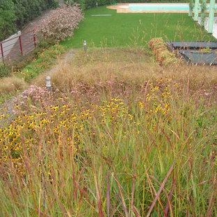 Ispirazione per un giardino xeriscape minimal esposto in pieno sole di medie dimensioni e sul tetto in autunno