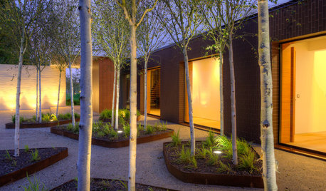 Guida Houzz: 10 Pavimentazioni che i Pro Usano in Giardino