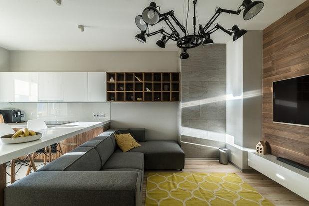 Современный Семейная комната by Михаил Новинский (MNdesign)