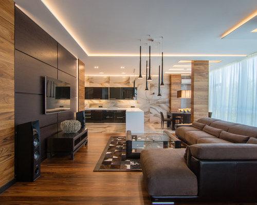 Best Contemporary Living Room Design IdeasRemodel PicturesHouzz