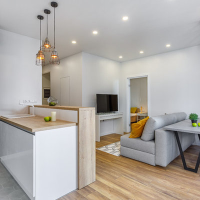 Inspiration for a contemporary formal and open concept medium tone wood floor and brown floor living room remodel in Moscow with white walls and a tv stand