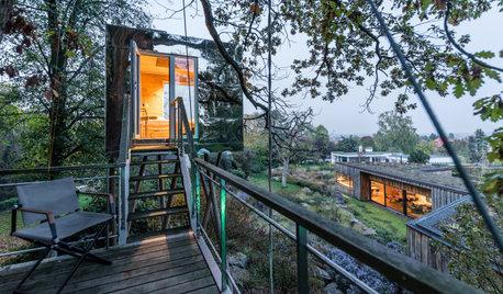Das ist der Wipfel: Ein verspiegeltes Baumhaus für ein Ehepaar