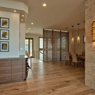 Moderner Flur mit weißer Wandfarbe und braunem Holzboden in Sonstige