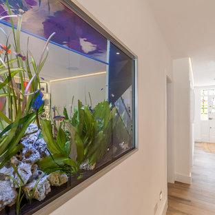 ロンドンの中くらいのコンテンポラリースタイルのおしゃれな廊下 (白い壁、磁器タイルの床) の写真