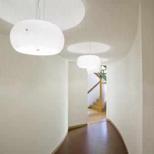 バーリントンのコンテンポラリースタイルのおしゃれな廊下 (コルクフローリング) の写真