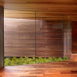 Ejemplo de recibidores y pasillos minimalistas, grandes, con paredes marrones y suelo de madera en tonos medios