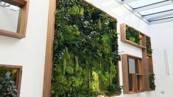 Bespoke Biophilic Preserved Moss Wall Frame