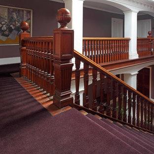サリーの巨大なトラディショナルスタイルのおしゃれな廊下 (紫の壁、カーペット敷き) の写真