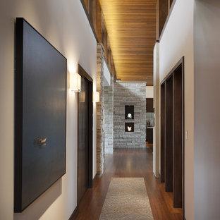 デンバーのコンテンポラリースタイルのおしゃれな廊下 (竹フローリング) の写真