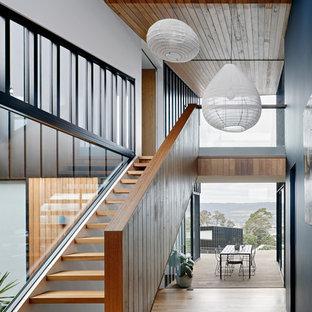 Ejemplo de recibidores y pasillos actuales con paredes negras, suelo de madera en tonos medios y suelo marrón