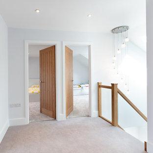 Couloir avec moquette Berkshire : Photos et idées déco de ...