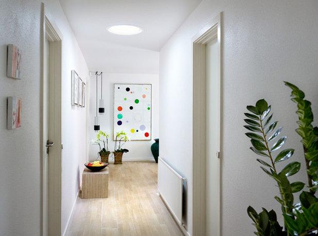 Contemporary Hall Contemporary Hallway & Landing