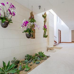 マイアミの広い地中海スタイルのおしゃれな廊下 (白い壁、白い床) の写真