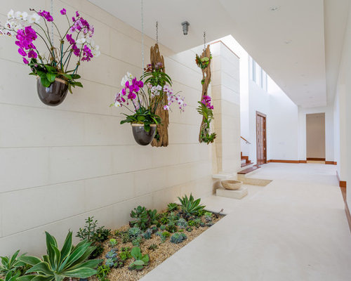 Orchids Garden Design tropical by jay sifford garden design Saveemail