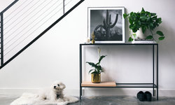 Decorative Console Table with Plants