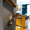 Pets: Inventive Designs for Cats and Dogs From Climbing Frames to Dens