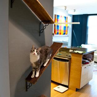 ミルウォーキーの小さいエクレクティックスタイルのおしゃれな廊下 (グレーの壁、淡色無垢フローリング) の写真
