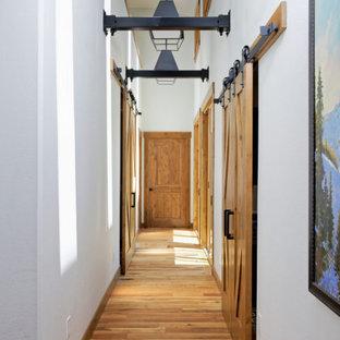 デンバーの中くらいのラスティックスタイルのおしゃれな廊下 (青い壁、無垢フローリング) の写真