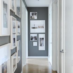 Cette image montre un couloir traditionnel de taille moyenne avec un mur gris et un sol en bois brun.