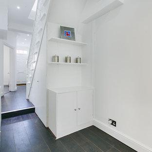 ロンドンの中くらいのトランジショナルスタイルのおしゃれな廊下 (白い壁、濃色無垢フローリング) の写真