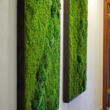 Green plant wall, moss wall art