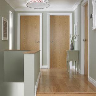 Ejemplo de recibidores y pasillos modernos con paredes verdes y suelo de madera en tonos medios