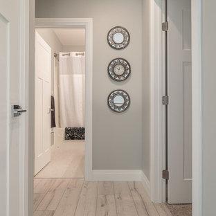 エドモントンの中サイズのおしゃれな廊下 (グレーの壁、ラミネートの床、マルチカラーの床) の写真