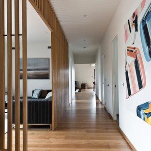 Couloir Moderne Photos Et Idees Deco De Couloirs