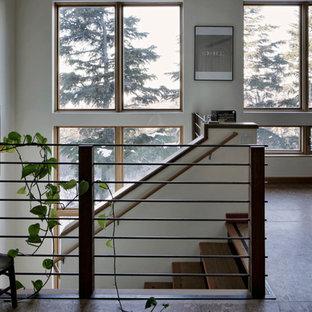 Idee per un grande ingresso o corridoio contemporaneo con pareti marroni, pavimento in compensato e pavimento marrone