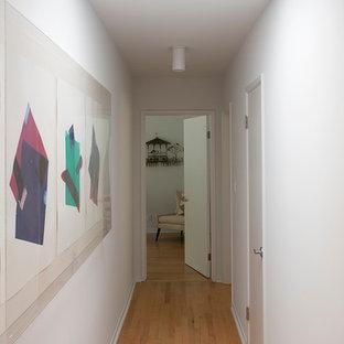 Foto di un grande ingresso o corridoio minimalista con pareti bianche e parquet chiaro
