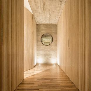 Свежая идея для дизайна: огромный, узкий коридор в стиле модернизм с бежевыми стенами и паркетным полом среднего тона - отличное фото интерьера
