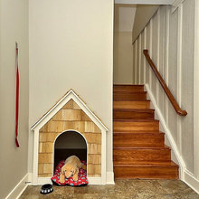 Dog House of the Month