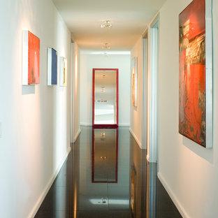 マイアミのコンテンポラリースタイルのおしゃれな廊下 (白い壁、黒い床) の写真
