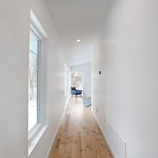 Inspiration for a mid-sized midcentury hallway in Grand Rapids with white walls, light hardwood floors and beige floor.