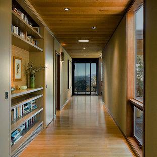 Idéer för en stor modern hall, med beige väggar, mellanmörkt trägolv och beiget golv