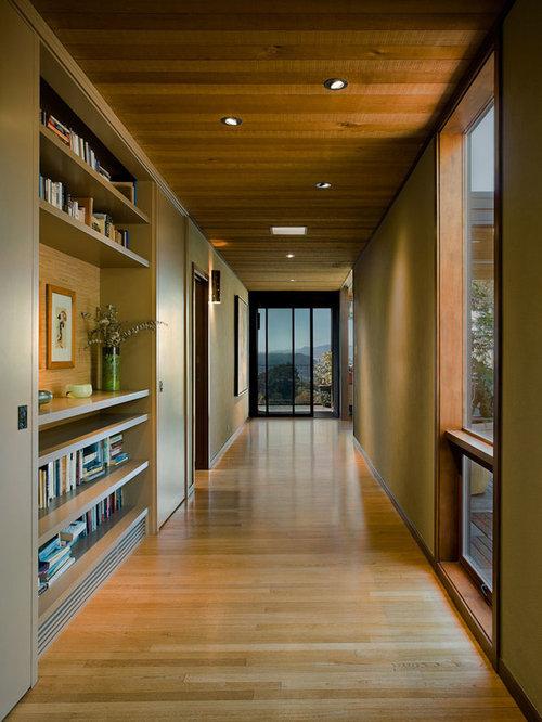 Modern Hallway Design Ideas Pictures Remodel amp Decor