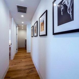 Foto på en mellanstor funkis hall, med vita väggar, mellanmörkt trägolv och brunt golv