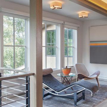 Modern Mountain Home   Telluride CO