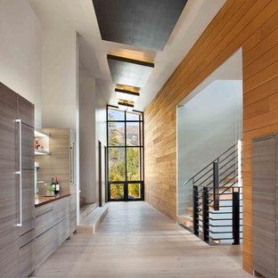 Diseño de recibidores y pasillos contemporáneos, grandes, con paredes marrones y suelo de madera clara