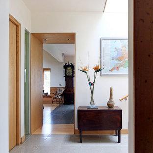 Идея дизайна: большой коридор в современном стиле с белыми стенами, полом из известняка, серым полом, сводчатым потолком и панелями на части стены