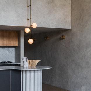 Immagine di un piccolo ingresso o corridoio minimalista con pareti grigie, pavimento in cemento e pavimento grigio