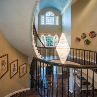 フィラデルフィアの巨大なトランジショナルスタイルのおしゃれな廊下 (濃色無垢フローリング、三角天井) の写真