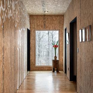 Inspiration för mellanstora moderna hallar, med plywoodgolv