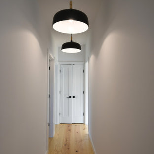 This is an example of a mid-sized midcentury hallway in New York with white walls and light hardwood floors.