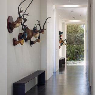 Example of a large eclectic concrete floor and gray floor hallway design in San Diego with white walls