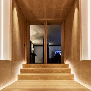 Идея дизайна: огромный коридор в современном стиле с коричневыми стенами и паркетным полом среднего тона