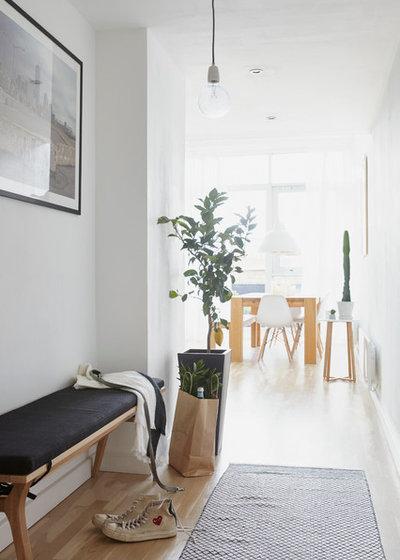 Nórdico Recibidor y pasillo Scandinavian Hallway & Landing