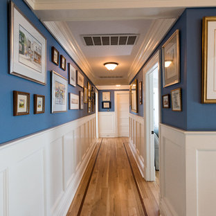 This is an example of a large beach style hallway in New York with blue walls and medium hardwood floors.