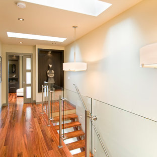 Ejemplo de recibidores y pasillos actuales con paredes blancas, suelo de madera oscura y suelo naranja